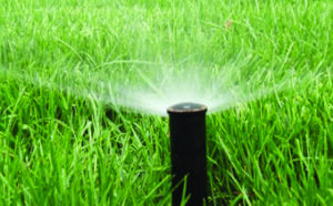 Johannesburg Irrigation & Sprinkler systems